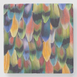 Dessous-de-verre En Pierre Plumes colorées de perroquet de perruche