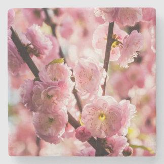 Dessous-de-verre En Pierre Prune fleurissante - Paradize rose