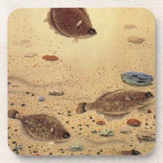 Dessous-de-verre Flets vintages, poissons plats de la vie marine