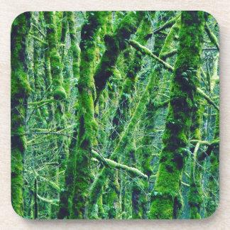 Dessous-de-verre Forêt verte