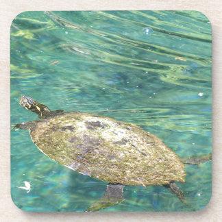 Dessous-de-verre grande natation de tortue de rivière