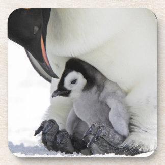 Dessous-de-verre Île de colline de neige du pingouin d'empereur  