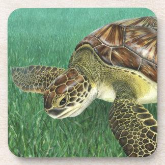 Dessous de verre juvéniles de tortue verte