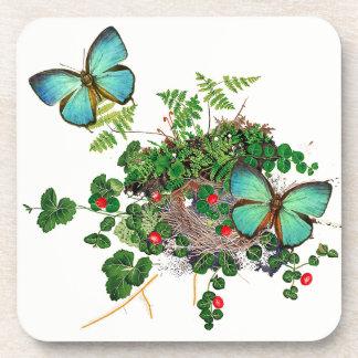 Dessous-de-verre Le nid d'oiseaux de fougères de papillon fleurit