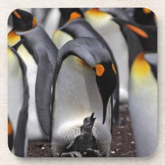 Dessous-de-verre Le Roi pingouin avec le poussin
