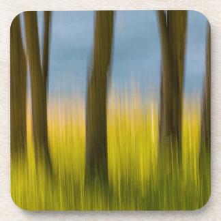Dessous-de-verre Les troncs d'arbre et engazonnent les îles de |