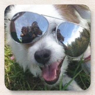 Dessous-de-verre Lunettes de soleil l'AVENIR LUMINEUX de chien pour