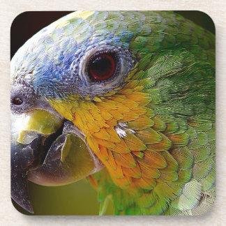 Dessous-de-verre Oiseau exotique de vert d'oiseau d'animaux