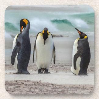 Dessous-de-verre Pingouins lissant sur la plage