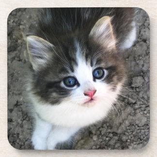 Dessous-de-verre Portrait MIGNON de chaton
