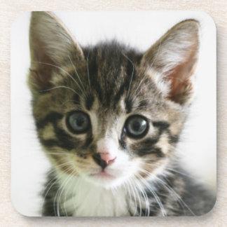 Dessous-de-verre Regard fixe de chaton