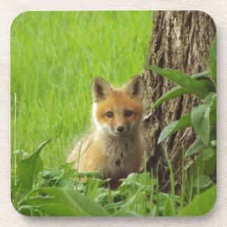 Dessous-de-verre Renard mignon de bébé en photographie de printemps