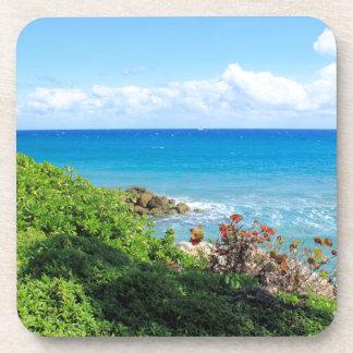 Dessous-de-verre rocky-foliage-coast-deerfield-beach-4s6490