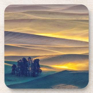 Dessous-de-verre Rolling Hills de blé au lever de soleil | WA