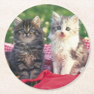 Dessous-de-verre Rond En Papier Deux chatons se reposant sur une couverture