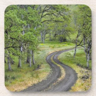 Dessous-de-verre Route de campagne par des arbres, Orégon