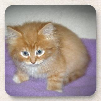 Dessous-de-verre Tache sur ce chaton