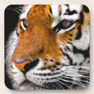 Dessous-de-verre Tigre