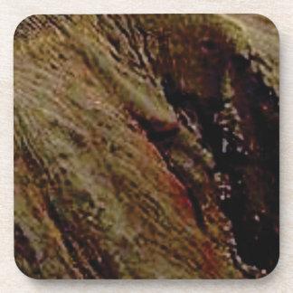 Dessous-de-verre trempez le canyon coloré