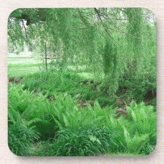Dessous-de-verre Verts luxuriants