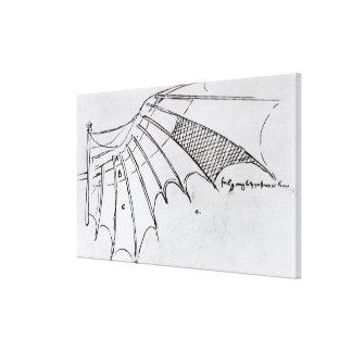 Détail d'une aile mécanique toiles
