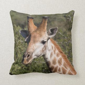 Détail principal de girafe coussin