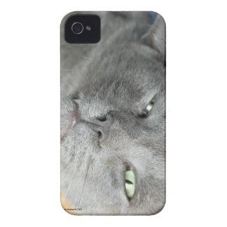 Détendez ! Caisse de ronronnement grise de Coques iPhone 4 Case-Mate