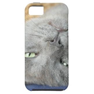 Détendez ! Caisse de ronronnement grise de Étui iPhone 5