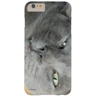 Détendez ! Chat de ronronnement gris HTV Coque iPhone 6 Plus Barely There
