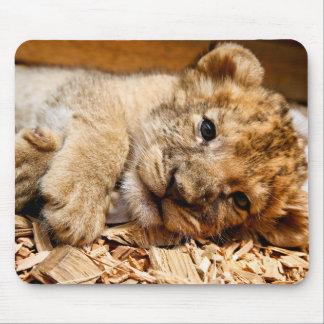 Détente de petit animal de lion tapis de souris