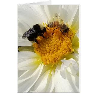 Deux abeilles sur une carte de fleur