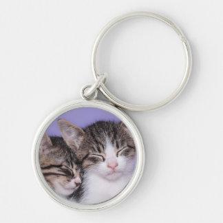 Deux chatons mignons faisant une sieste porte-clé rond argenté