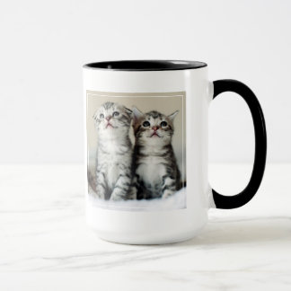 Deux chatons mignons sur le lit tasses