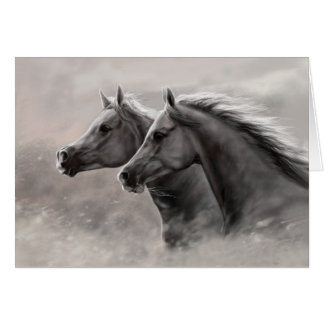 Deux chevaux peignant les étalons noirs de cadeau cartes de vœux