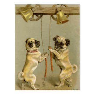 Deux chiens de carlin sonnant les cloches de Noël Carte Postale