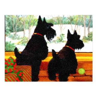 Deux chiens de Scotty à Noël Cartes Postales