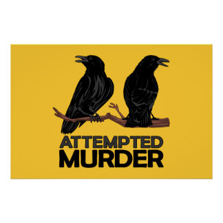 Deux corneilles = tentatives de meurtre poster