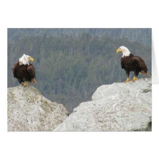 Deux Eagles chauves Carte De Vœux
