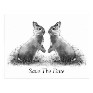 Deux lapins (lapins) : Réservez la date Carte Postale