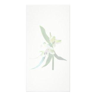 Deux lis asiatiques blancs cartes de vœux avec photo