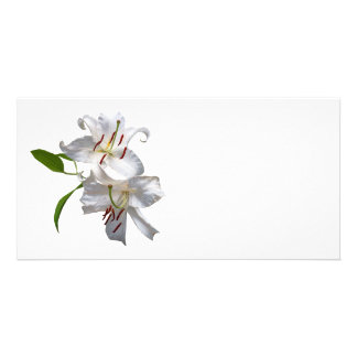 Deux lis blancs cartes de vœux avec photo