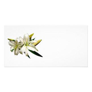 Deux lis blancs et bourgeons photocarte customisée