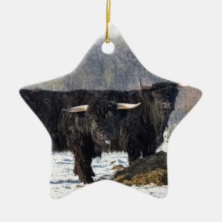 Deux montagnards écossais noirs dans la neige ornement étoile en céramique