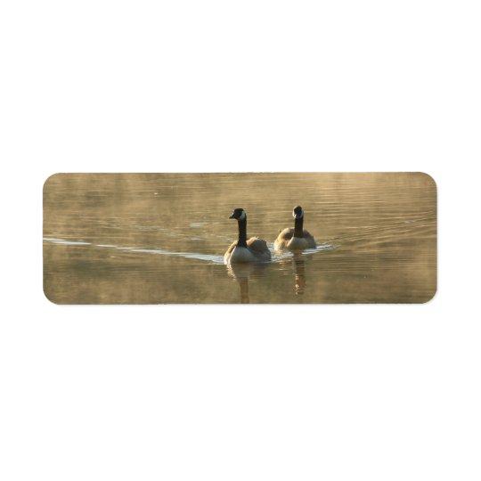 deux oies du Canada nageant sur la rivière par lev Étiquettes D'adresse Retour