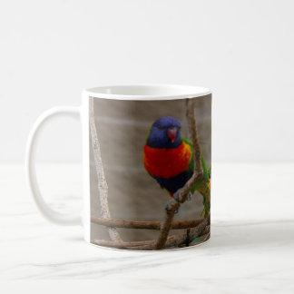 Deux oiseaux de zoo. Amour un un autre, 15h12 de Mug