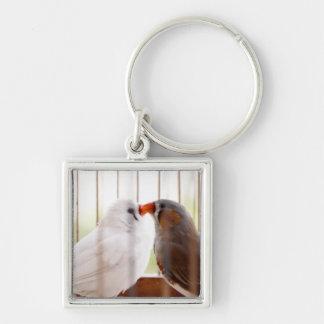 Deux oiseaux mignons de pinson dans la cage porte-clé carré argenté