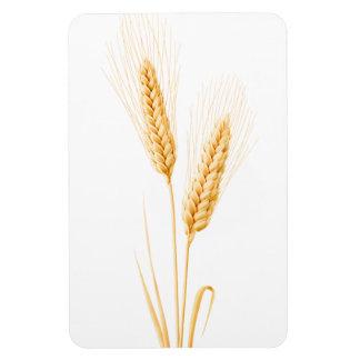 Deux oreilles de blé magnet flexible