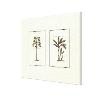 Deux palmiers encadrés par miniature toile