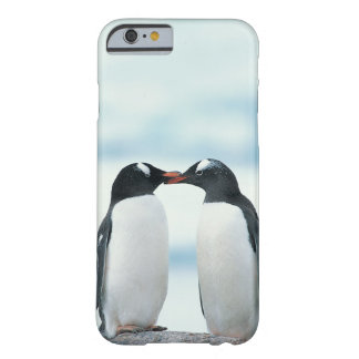 Deux pingouins touchant des becs coque iPhone 6 barely there