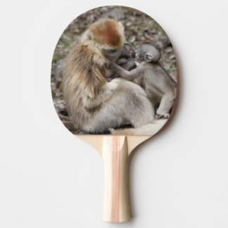 Deux singes d'or femelles avec des nouveaux-nés raquette tennis de table